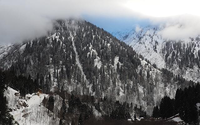 Ayder Yaylası Kış Manzaraları