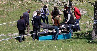 Ankara'da Ayı Saldırısı! Kampa Giderken Dikkat Edin