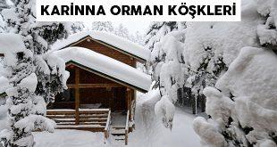 Uludağ Bungalov Evler Karinna Orman Köşkleri - Bursa