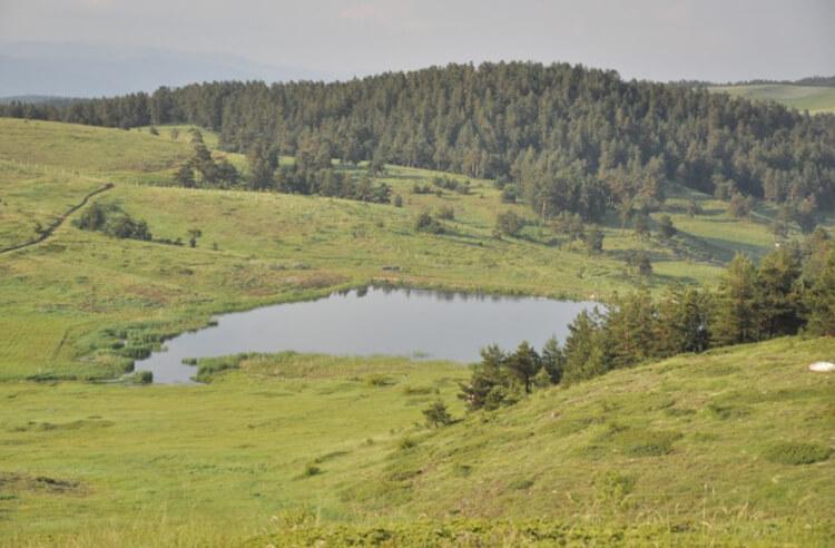 Hazım Dağlı Tabiat Parkı Flora ve Fauna Bilgileri