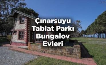 Ordu Çınarsuyu Tabiat Parkı Bungalov Evleri