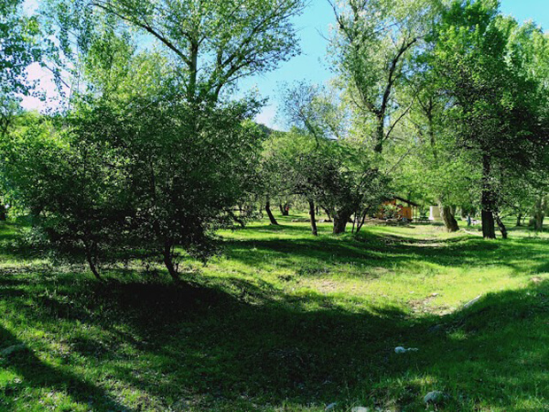 Örenönü Tabiat Parkı Kamp Alanı