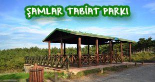 Şamlar Tabiat Parkı Kamp Alanı - Şamlar Tabiat Parkı Giriş Ücreti 2020