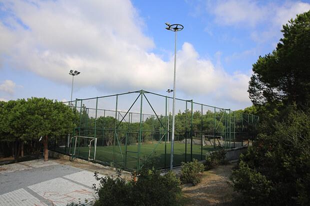 Şamlar Tabiat Parkı'nda Neler Yapılır?