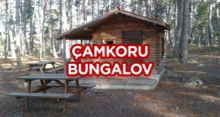 Çamkoru Tabiat Parkı Bungalov Evleri - Ankara