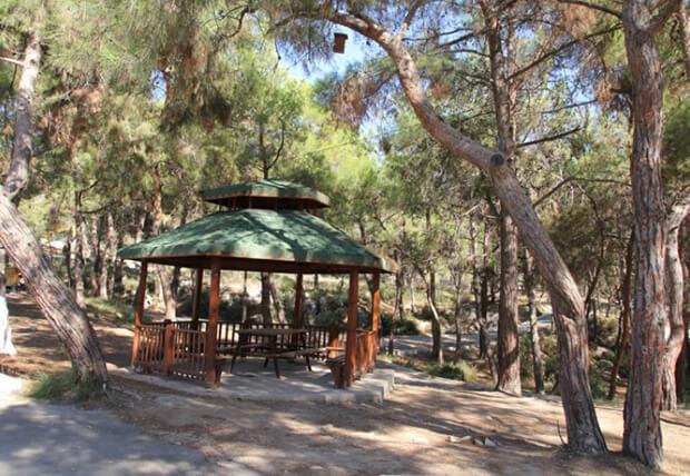 Kuyuluk Tabiat Parkı Giriş Ücretleri Listesi