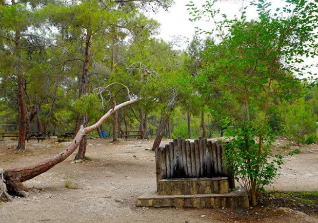 Kuyuluk Tabiat Parkı'nda Bulunan İmkanlar