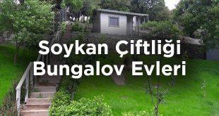 Gökçeada Soykan Çiftliği Bungalov Evleri
