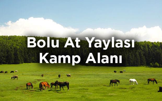 Bolu At Yaylası Kamp Alanı- Kızılağıl Köyü