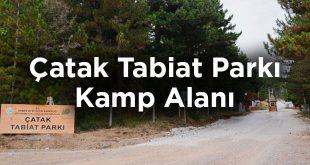 Çorum Kamp Yeri Tavsiyesi: Çatak Tabiat Parkı Kamp Alanı