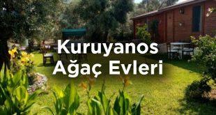 Hayıtbükü Koyu Bungalov: Kuruyanos Ağaç Evleri