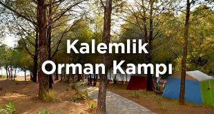 Kalemlik Orman Kampı- İzmir Menderes