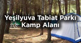 Yeşilyuva Tabiat Parkı Kamp Alanı - Kastamonu