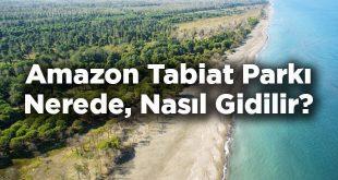 Amazon Tabiat Parkı Nerede? Amazon Tabiat Parkı'na Nasıl Gidilir?