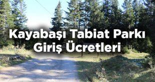 Kayabaşı Tabiat Parkı Giriş Ücretleri - Trabzon Akçaabat