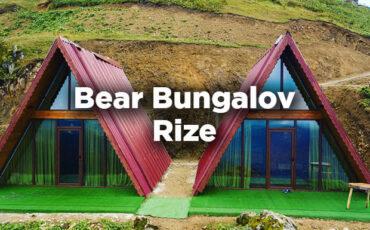 Rize Bear Bungalov - İkizdere