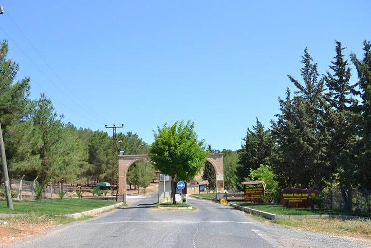 Gölpınar Tabiat Parkı'nda Bulunan İmkanlar