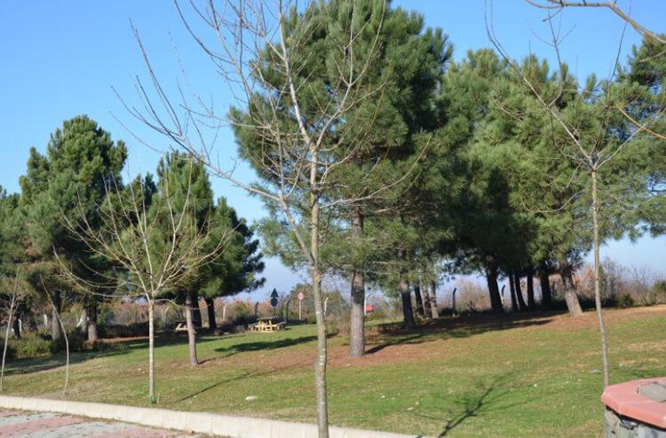 Göztepe Tabiat Parkı'nda Bulunan İmkanlar