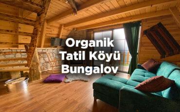 organik-tatil-koyu-bungalov-camlihemsin-cayirduzu
