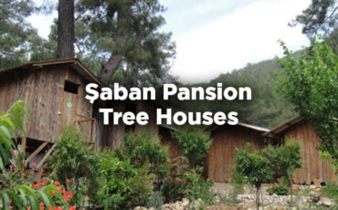 Şaban Pansion Tree Houses - Olympos
