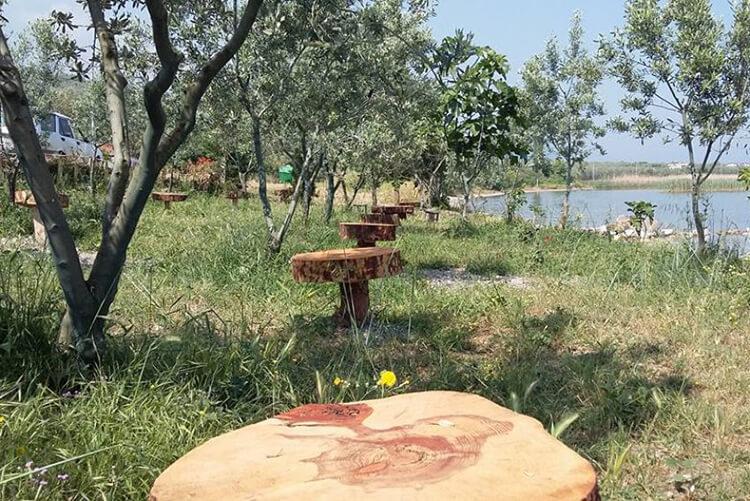 Doğa Muhit Kamping Kamp Alanı