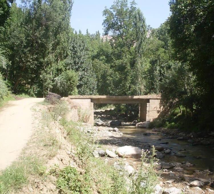 Horoz Deresi Kamp Alanı