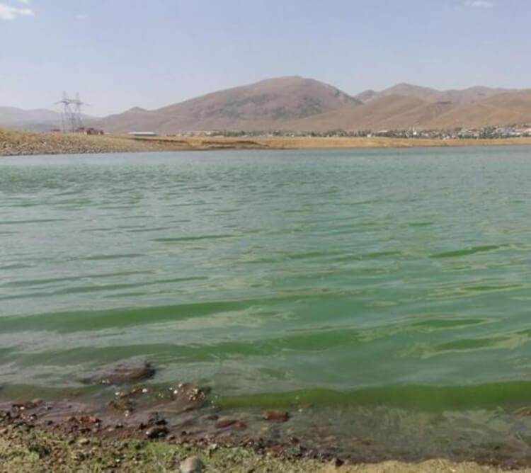 Kanireş Barajı Kamp Alanı