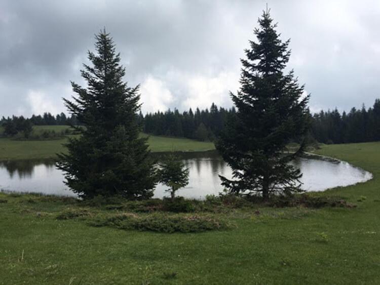 Kargalı Gölcük Tabiat Parkı Kamp Alanı