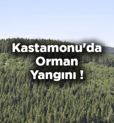 Kastamonu'da Orman Yangını! Ormana Girişler Yasaklandı!
