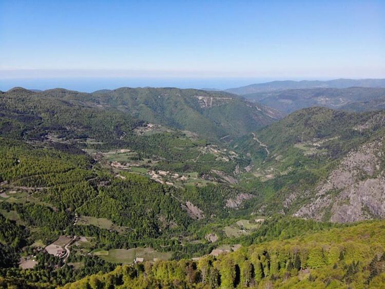 Kastamonu'da Orman Yasağı