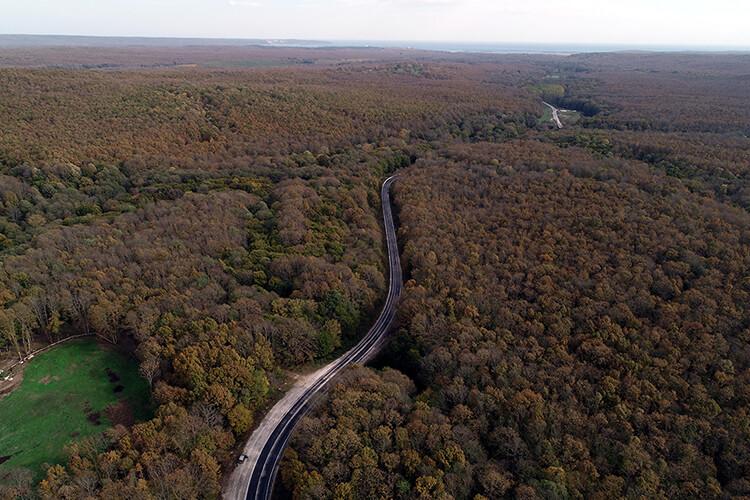 Kırklareli'nde Orman Yasağı