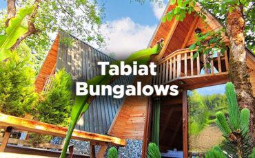 Tabiat Bungalows - Çamlıhemşin Rize
