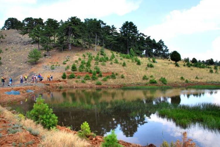 Yazır Gölü Kamp Alanı