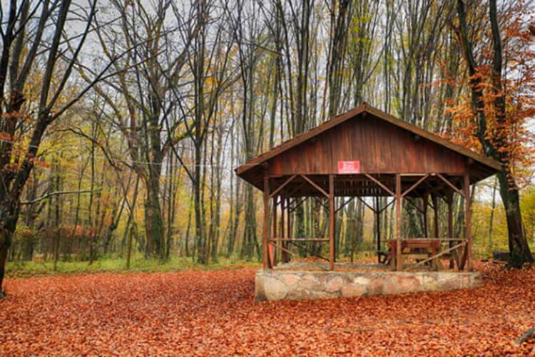 Balamba Tabiat Parkı Kamp Alanı