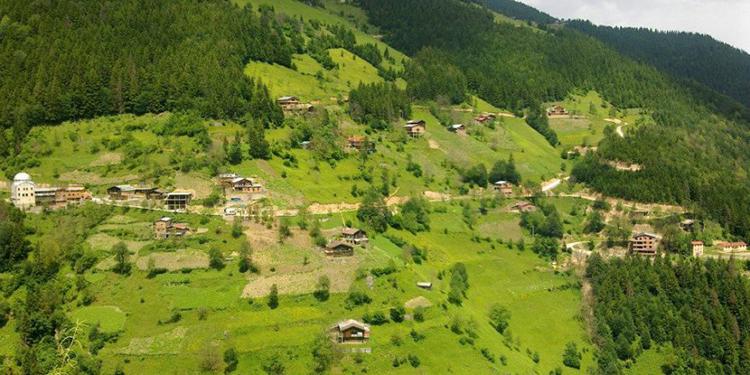 Demirli Kamp Alanı